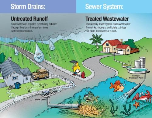 stormwater-diagram.jpg